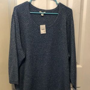 Blue w/ Silver Thread 3/4 Length Sweater from Cato